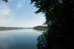 1stechlinsee
